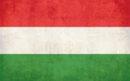 перевод документов на венгерский, с венгерского, перевести, цены, заказать