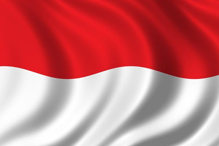 перевод документов на индонезийский, с индонезийского, Киев, цены, заказать